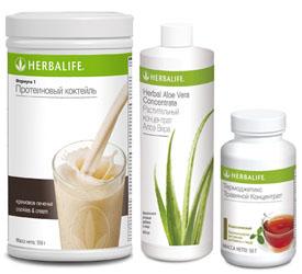 чай гербалайф для похудения как принимать