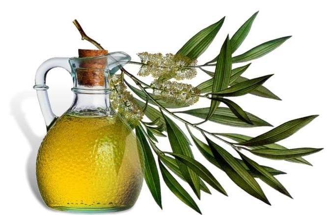 Оливковое масло в составе