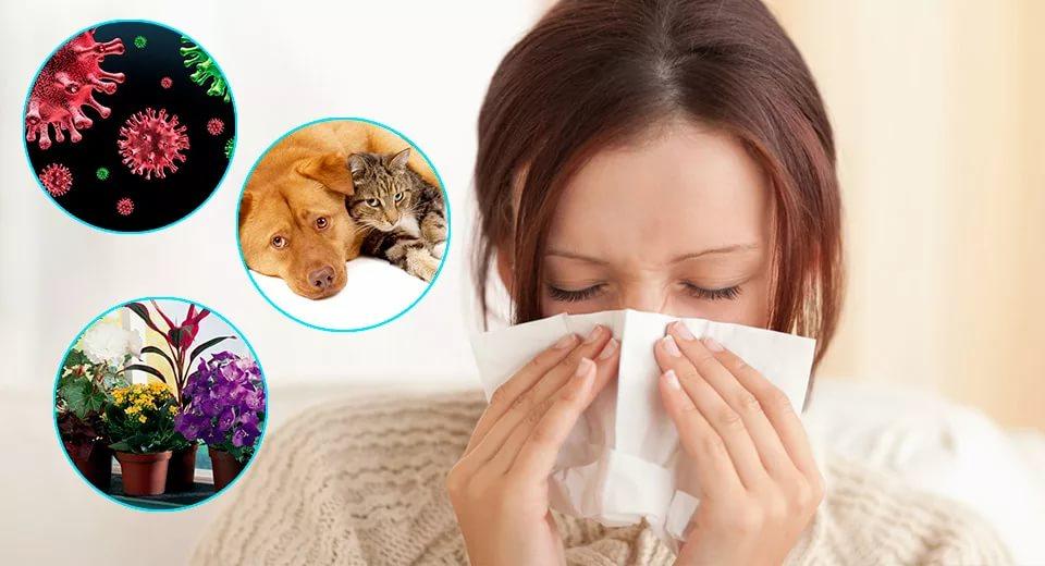 allergiy-otek-kvinke